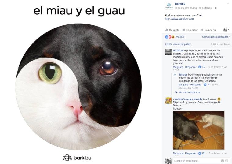 barkibu-viral-miau-guau